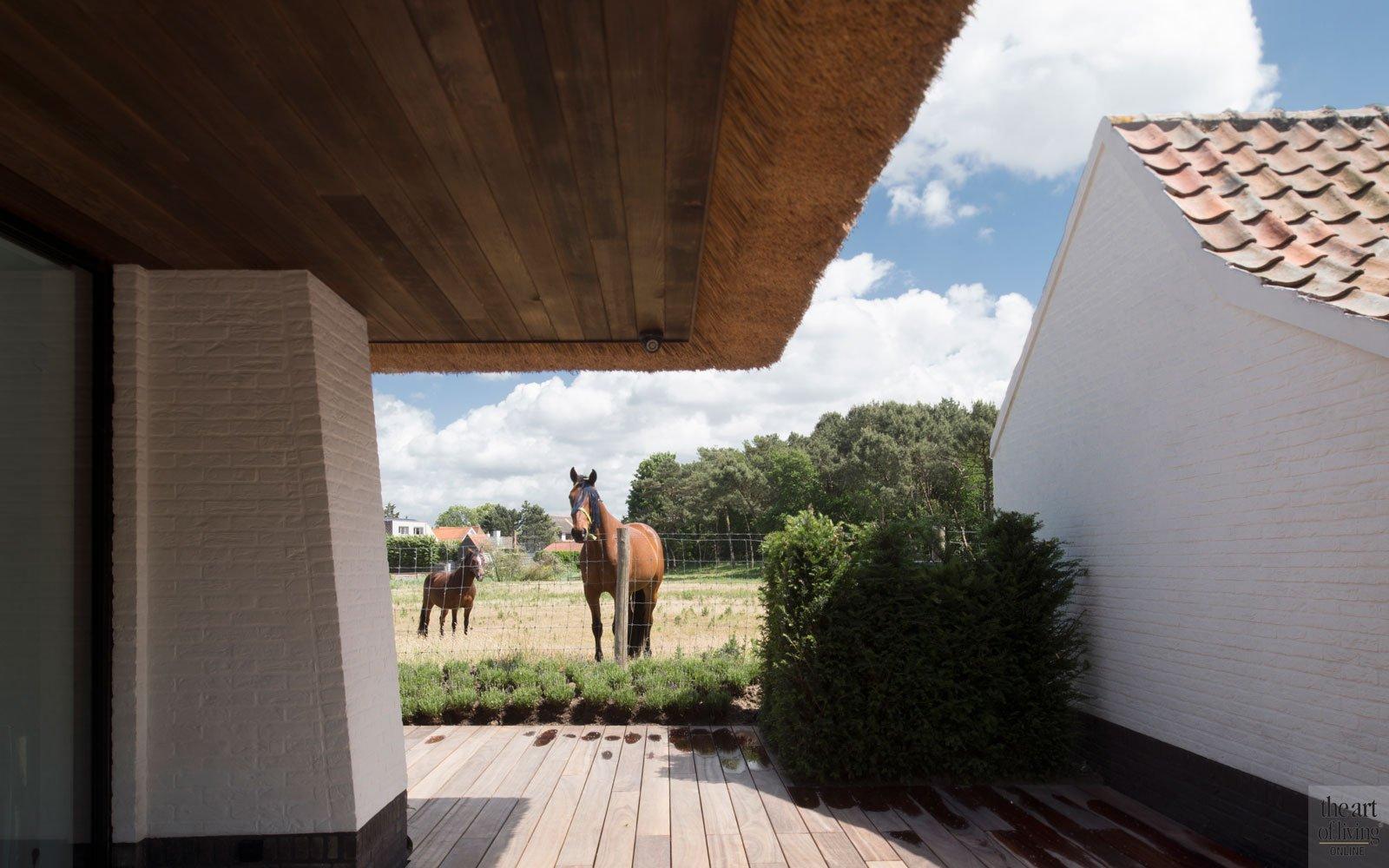 Houten vlonder, natuurlijke omgeving, idyllisch, ruime villa, HC Demyttenaere