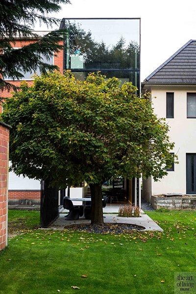 Icoon Architecten, exterieur, achterkant, boom, tuin, terras