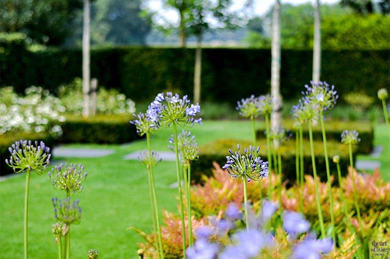 Landelijke tuin, Buijtels Buitengewone Tuinen, Strakke tuin, Zichtlijnen, Beplanting, villa tuin
