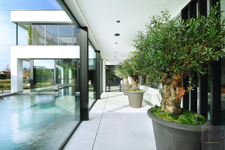 Luxe wellness, luxe wellness, Perfect Sense Sauna & Wellness