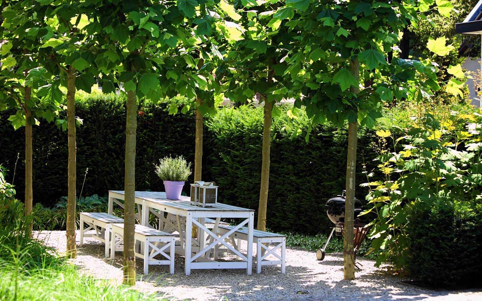 Moderne tuin, stoop tuinen, the art of living,